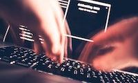 Durch Hacker: Erpressung von Firmen nimmt zu