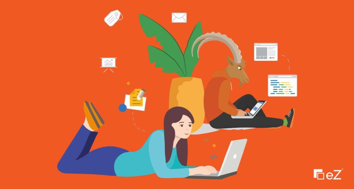 B2B-Commerce: So managst du Content und Commerce auf einer Plattform