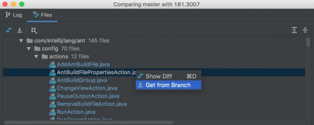 Mit wenigen Mausklicks kann jetzt eine Datei von einem anderen Branch kopiert werden. (Screenshot: Jetbrains)