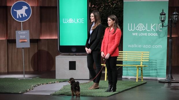 """Walkie: So funktioniert die Gassie-Geh-App aus """"Die Höhle der Löwen"""""""
