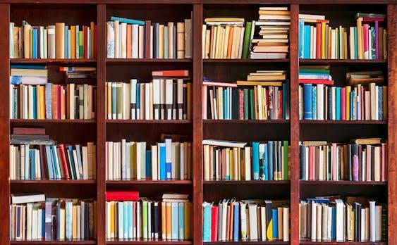 Diese Business-Bücher solltest du 2019 lesen – von Führungskräften empfohlen