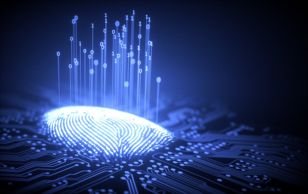 Mehr als eine Million Fingerabdrücke offen im Netz