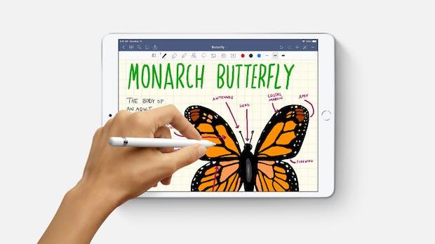 Neues iPad Mini mit 9 Zoll und 10,8-Zoll-iPad in Arbeit – AR-Brille frühestens 2022