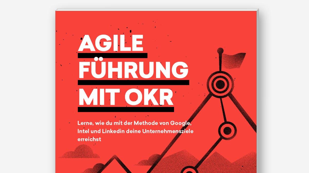 OKR-Ansatz: PDF-Guide und Onlinekurs zur Implementierung im eigenen Unternehmen
