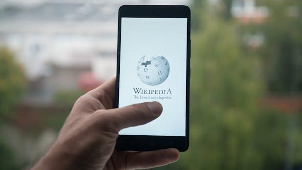 Problemfall Wikipedia: Kein Lexikon für alle