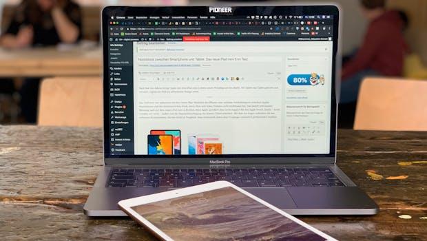 iPad mini (2019) im Test. (Foto: t3n)