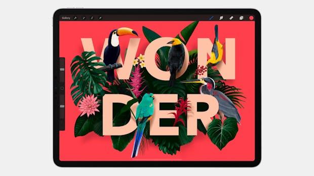 Illustration auf dem iPad – Procreate 4.3 bringt Textwerkzeug