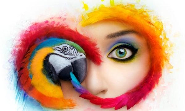 Adobes Creative-Cloud-App bekommt einen neuen Look