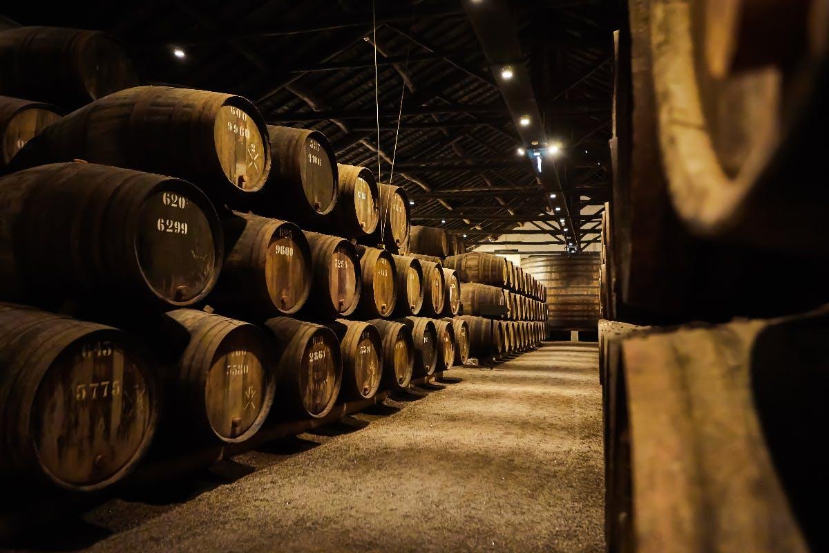 Schwedische Brennerei verwendet KI, um den perfekten Whisky zu kreieren