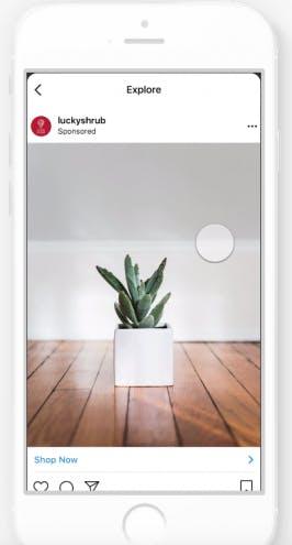Instagram bietet Entdecken-Bereich für Werbung an