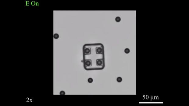 Um Medikamente zuzustellen: Forscher drucken Mikro-Roboter, die in die Blutbahn passen
