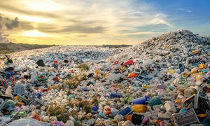 Replace Plastic: Diese kostenlose App sagt Plastik den Kampf an