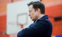 Anruf beim Bürgermeister: Elon Musk beschwert sich über deutsche Beamte