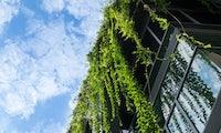 Klima- und Umweltschutz: 12 Tipps, die dein Unternehmen grüner machen