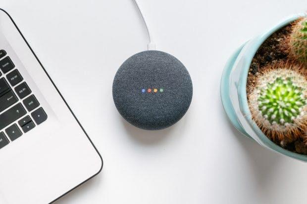 Google Assistant im Google Home. (Foto: Shutterstock)