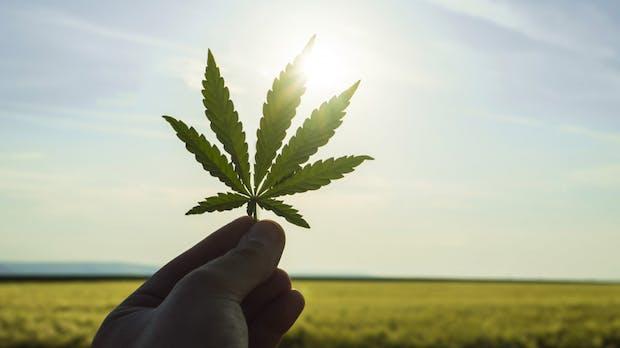 Demecan: Erstes deutsches Cannabis-Startup angelt sich 7 Millionen Euro
