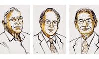 Chemie-Nobelpreis geht an die Väter der Lithium-Ionen-Batterie