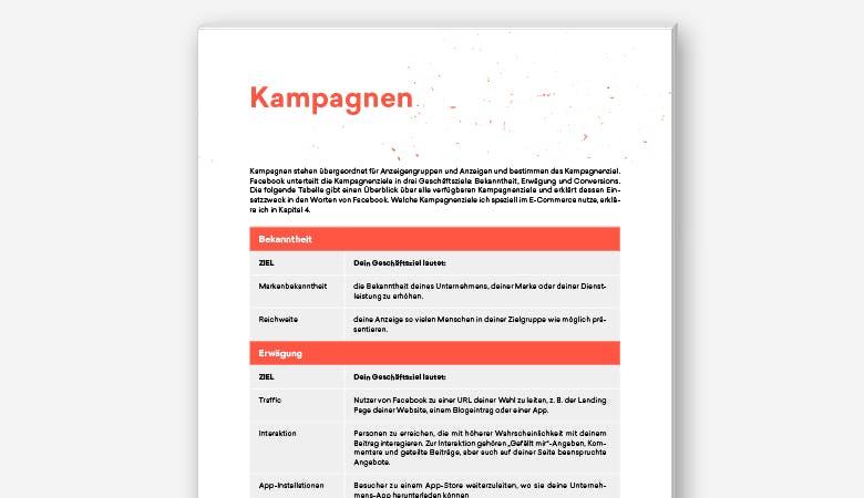 Eine einsehbare Seite des Guides, auf der eine Tabelle über verschiedene Kampagnenarten informiert