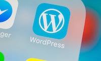 Sicherheitswarnung: WordPress-Update schließt vier Lücken
