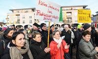 Tesla-Werk in Grünheide: Kritiker erzwingen Rodungsstopp