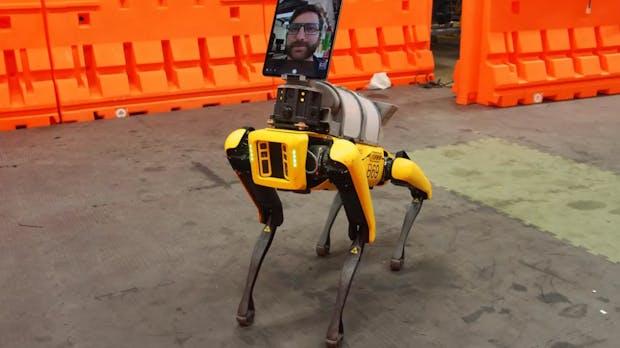 Coronadiagnose: Roboterhund Spot entlastet Krankenhauspersonal
