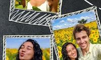 Google Fotos bohrt Collagen-Funktion auf