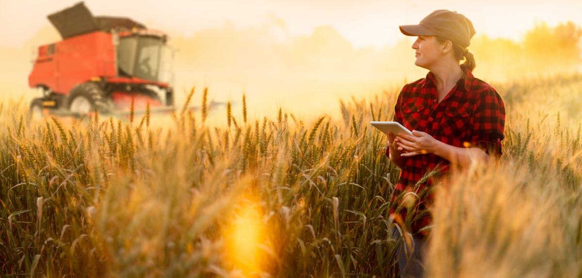 """900 Prozent """"Zinsen"""" und mehr: Das steckt hinter dem Farming von Kryptowährungen"""