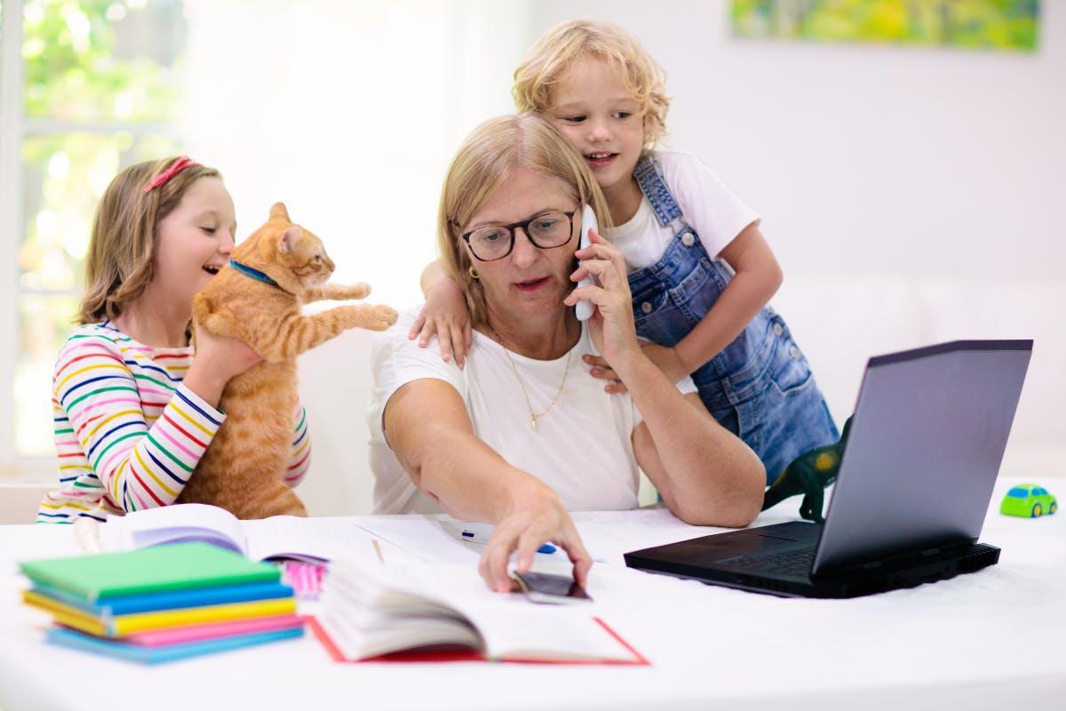 Desperate in the homeschooling office: New York hotline makes women scream