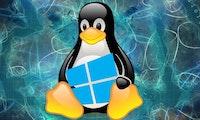 Windows 10 kann künftig Linux-Apps mit GUI ausführen