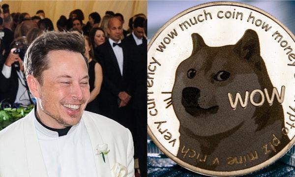 Vor Saturday Night Live: Elon Musk warnt vor Dogecoin und mahnt zur Vorsicht